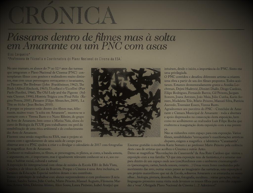 Jornal Flor do Tâmega 24 de Outubro 2017 ano6