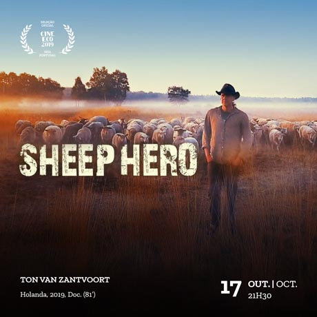 sheep-hero-prev