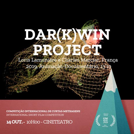 darwin-prev